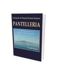 Pantelleria è il primo volume di approfondimento dell'enciclopedia dei waypoint siciliani sommersi. Una raccolta unica, frutto di una pluriennale esperienza in mare, che verrà presentata la prossima primavera, probabilmente nel mese di aprile.
